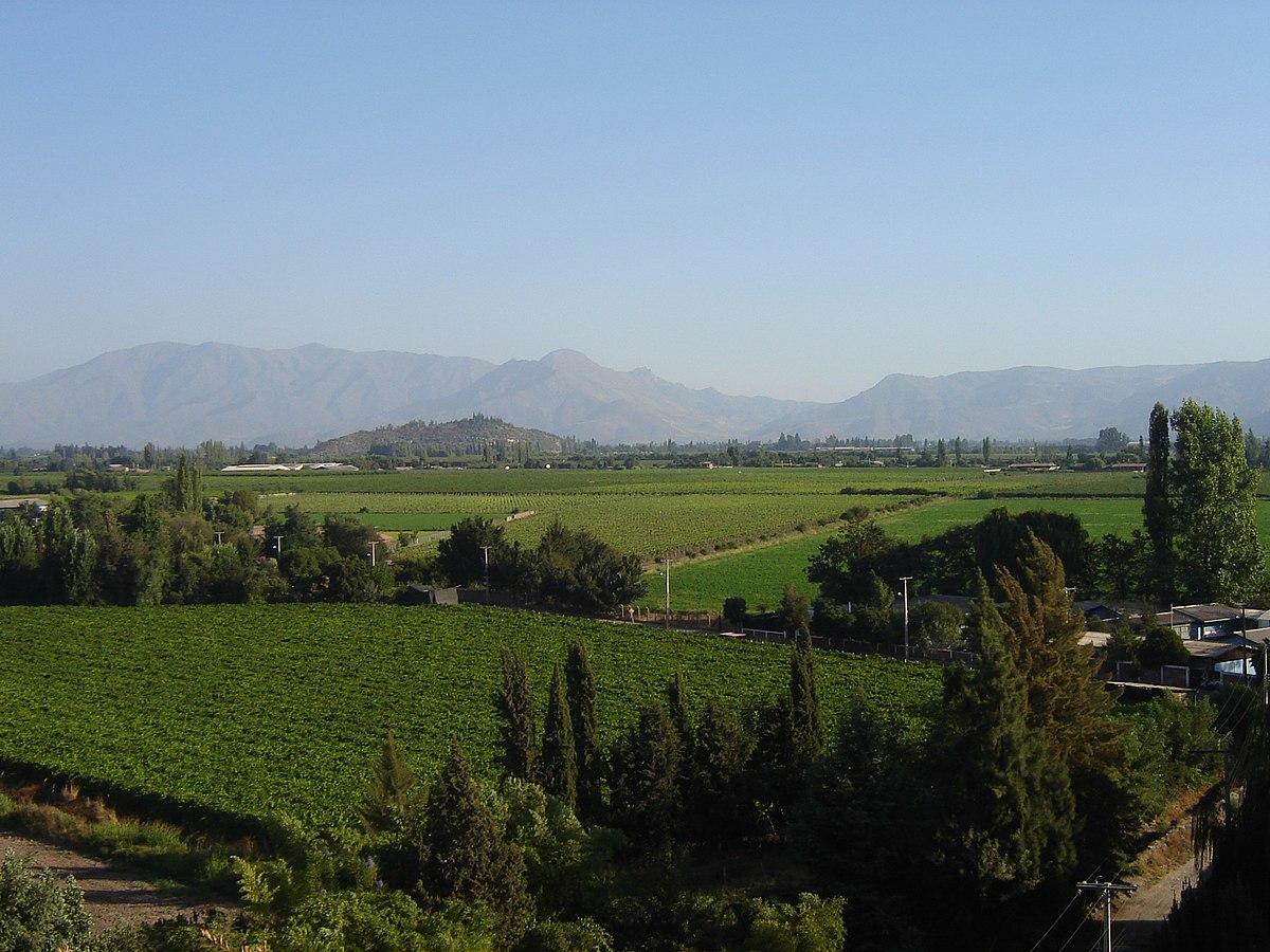 vallée de l'Aconcagua au Chili